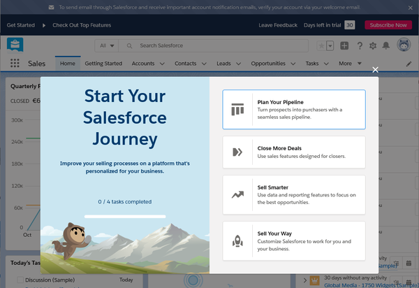 Salesforce trial 5.png